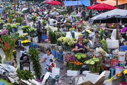 Chợ hoa ngày tết.- dinartrade.com photo