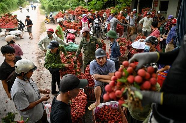 Nông phẩm Việt Nam xuất sang Trung Quốc: bao giờ bình đẳng?