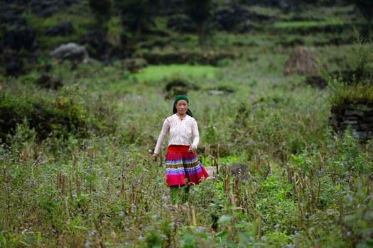 Hình minh họa. Hình chụp hôm 27/10/2018 một phụ nữ Việt Nam và là mẹ của một em gái bị mất tích, nghi là bị bán sang Trung Quốc từ tỉnh Hà Giang.