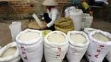 Gạo bán lẻ được phân chia thành nhiều loại.