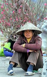 Một chị nông dân bán hoa đào ngày Tết. AFP
