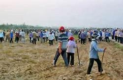 Người dân huyện Văn Giang bị cưỡng chế đất hôm 24/4/2012. RFA screen capture