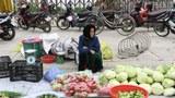 Việt Nam chuẩn bị gì trước tốc độ già hóa dân số tăng nhanh?