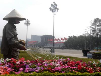 Công nhân chăm sóc hoa trang trí Tết 2018 cho thành phố Hà Nội.