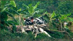 Căn nhà nhỏ để coi đầm của Ông Đoàn Văn Vươn ở xã Vinh Quang, huyện Tiên Lãng vừa bị kéo sập. Courtesy vov.