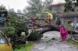 Quảng Bình: Hàng trăm nhà cửa đã bị tốc mái hoàn toàn, nhiều cây cối ngã đổ. thethaovanhoa