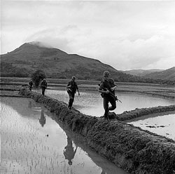 Thủy quân lục chiến, Tiểu đoàn 2, di chuyển dọc theo bờ đê truy lùng Việt Cộng, 10 - 12 - 1965. AFP PHOTO.