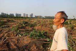 Một người dân Văn Giang tại khu đất vừa bị cưỡng chế hôm 24/4/2012. Phía xa là một phần khu đô thị Ecopark. Photo courtesy of chinhphu