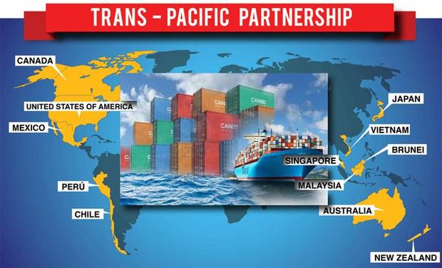 Hiệp định đối tác kinh tế xuyên Thái Bình Dương (Trans-Pacific Strategic Economic Partnership Agreement, viết tắt là TPP) gồm 12 quốc gia thành viên bao gồm Úc, Brunei, Chile, Malaysia, Mexico, New Zealand, Canada, Peru, Singapore, Vietnam, Mỹ và Nhật Bản