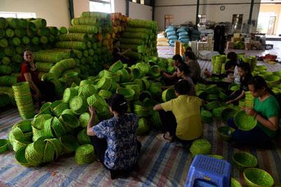 Ảnh chụp hôm 12/6/2015 tại ngoại ô Hà Nội những lao động nữ làm giỏ tre tại nhà để xuất khẩu.