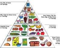 NewFoodPyramid200.jpg