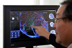 Bác sĩ Yoshitaka Narita của Trung tâm Ung thư Quốc gia Nhật Bản giới thiệu màn hình hiển thị 3D dùng trong y tế hôm 05/9/2013. AFP photo
