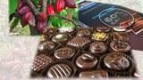 Hạt Cacao và kẹo Chocolate