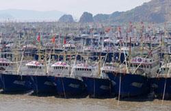 Tàu đánh cá Trung Quốc neo đậu tại một bến cảng ở thành phố Ôn Lĩnh ngày 16-09-2012. AFP photo.