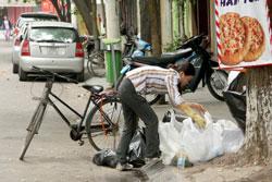 piciking-garbage-250.jpg