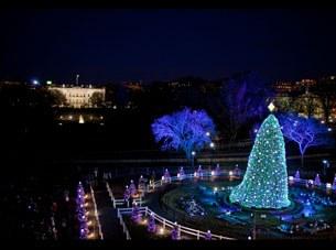 white-house-xmas-tree-305.jpg