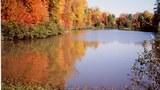 autumn-dc-305.jpg