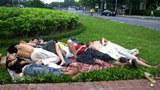 Trẻ lang thang ngủ tại công viên.