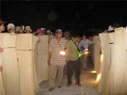 Người mua dùng đèn pin để lựa chiếu tại phiên chợ chiếu ở huyện Quỳnh Phụ, tỉnh Thái Bình, ảnh chụp trước đây. Photo courtesy of VITA.
