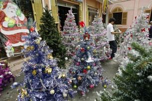 Một cửa hàng bán cây thông Giáng Sinh ở TP Sài Gòn hôm 20-12-2006.