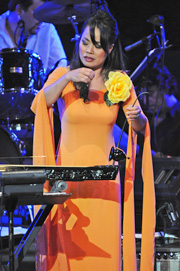 Nghệ sĩ Võ Vân Ánh biểu diễn đàn bầu
