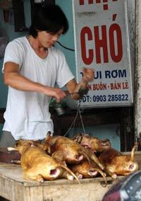 Một quầy bán thịt chó tại Hà Nội. AFP photo