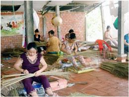 Gia đình anh Thoa đã tạo công ăn việc làm cho 14 phụ nữ trong xã. Courtesy of HOPE and AVNES