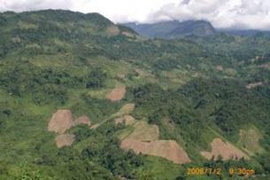 """Hình chụp đất dành cho dự án """"Trồng rừng nguyên liệu tại Quảng Nam"""" do Công ty Innov Green (Hồng Kong-Trung Quốc) thuê đất sử dụng dự kiến là 30.000ha."""