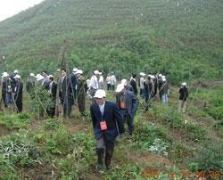 Cán bộ địa phương huyện Hải Hà, tỉnh Quảng Ninh thăm đất rừng cho Công ty Innov Green thuê. Photo courtesy of Innov Green.