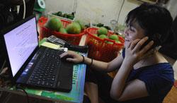 Một kỹ sư CNTT đang làm việc trong cửa hàng bán trái cây của mình tại Hà Nội hôm 10/5/2012, ảnh minh họa. AFP photo
