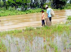 Một nông dân Đồng bằng sông Cửu long. Photo courtesy of BlogMoiTruong.