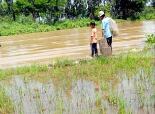 Một nông dân Đồng bằng sông Cửu long.