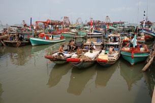 Nhiều ngư dân không dám ra biển sợ bị cướp, bị bắt