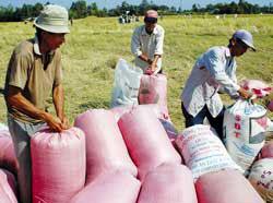 Đầu tư vào hạ tầng nông thôn sẽ giúp cải thiện và lưu thông hàng hoá nông sản tốt hơn. Photo courtesy of VietNamNet.