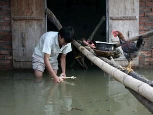 ha-noi-flood-305.jpg