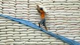 Rice-farner-export-305.jpg