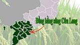 Đồng Bằng Sông Cửu Long
