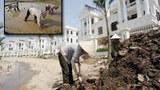 Đất tròng trọt được ưu tiên cho khu đô thị, cao ốc.?..RFA/AFP