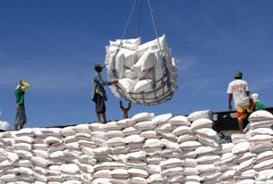 Gạo xuất khẩu được chuyển lên tàu. AFP