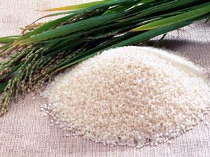Một loại gạo thơm được ưu chuộng. Source Yume.vn