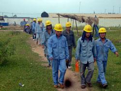 Lao động Trung Quốc tại công trình thi công nhà máy xi măng Nghi Sơn. File photo.