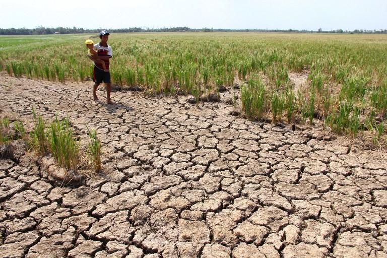 120.000 hộ dân ĐBSCL có nguy cơ thiếu nước