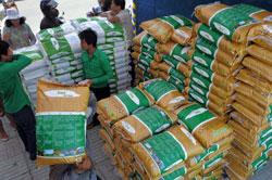 Một cửa hàng bán gạo trong chiến dịch bình ổn giá gạo tại Phnom Penh vào ngày 17 tháng 11 năm 2011. AFP PHOTO/TANG CHHIN SOTHY.