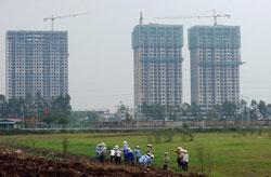 Một cánh đồng lúa đã được đô thị hóa ở vùng ven Hà Nội. AFP photo