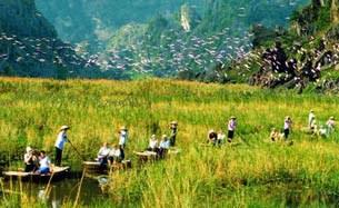 vietnamtourism.gov.vn-305.jpg