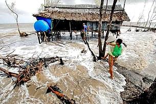 Vùng Khai Long, tỉnh Cà Mau trong khu vực hệ sinh thái rừng ngập mặn (với diện tích khoảng 230ha, thuộc ấp Khai Long, xã Đất Mũi, huyện Ngọc Hiển) đang bị sóng biển tàn phá từng ngày.