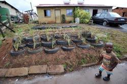"""Một đứa trẻ đứng trước một khu vườn với những vỏ xe tại một thị trấn được thiết lập theo chương trình """"Green Street"""" ở Nam Phi. AFP photo"""
