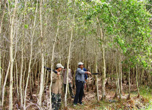 Đi kiểm soát một cánh rừng mới. Source nhansu.com