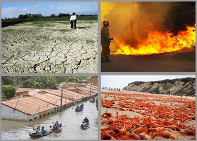 Những tác hại của El Nino