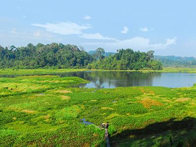 Cát Tiên có diện tích gần 72.000 ha trải dài qua ba tỉnh: Lâm Đồng, Bình Phước và Đồng Nai.